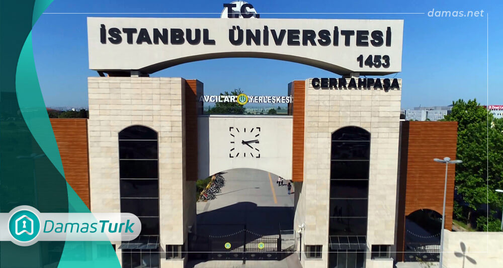 Learn about the most important schools and universities in the Avcılar region