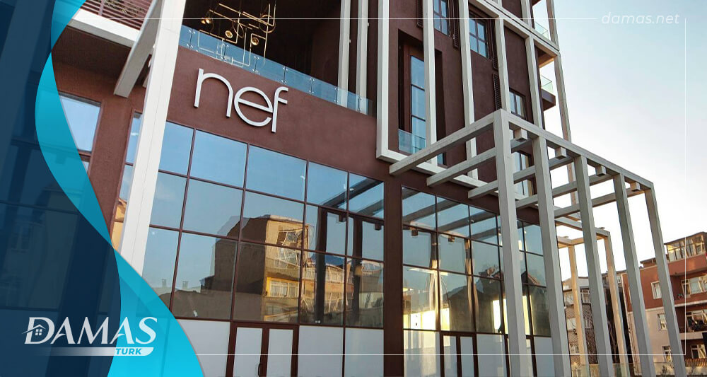All you need to know about Nef Real Estate